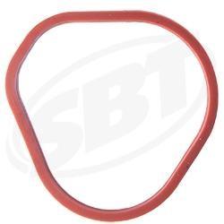 Intake O-Ring - Seadoo